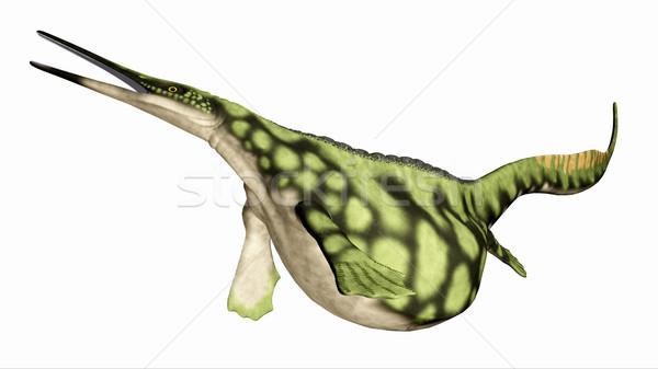 морской рептилия компьютер генерируется 3d иллюстрации изолированный Сток-фото © MIRO3D