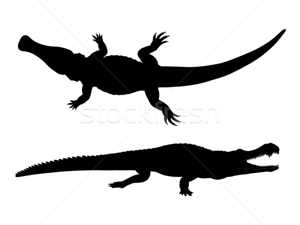 Silhouette crocodile ordinateur généré illustration noir Photo stock © MIRO3D