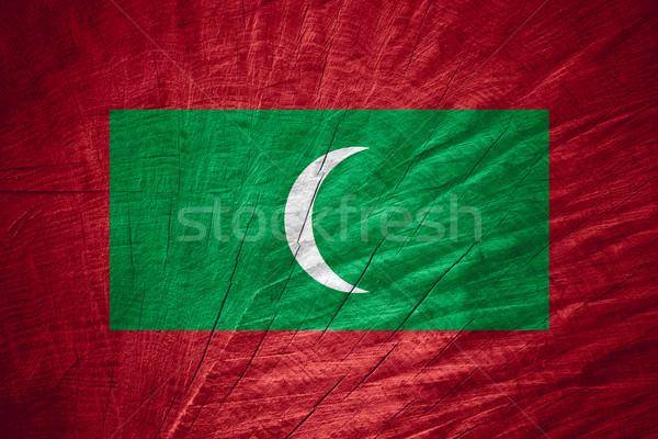 Bandiera Maldive banner legno texture Foto d'archivio © MiroNovak
