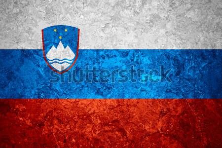 Bandiera Slovenia banner grezzo pattern texture Foto d'archivio © MiroNovak