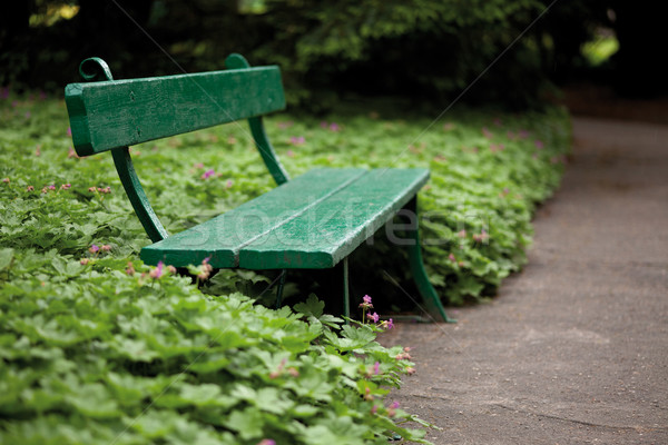 Zielone ławce ogród aleja kwiat Zdjęcia stock © MiroNovak