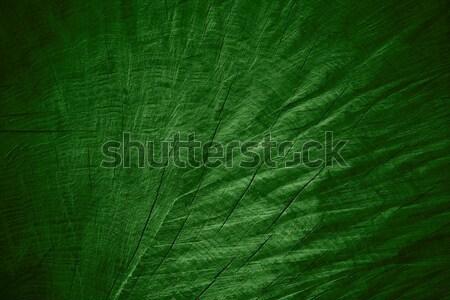 Verde grão de madeira padrão textura madeira Foto stock © MiroNovak