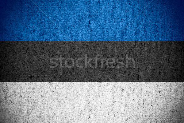 flag of Estonia Stock photo © MiroNovak