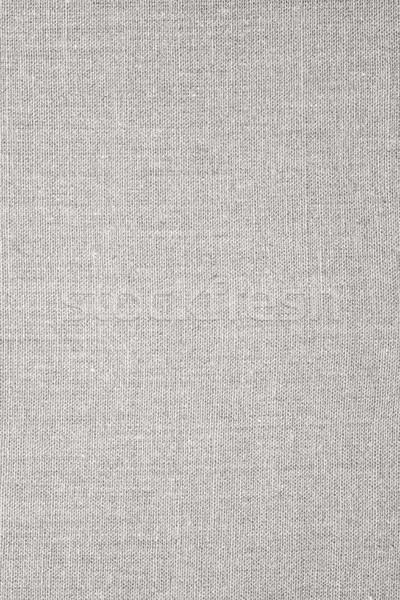 Szürke absztrakt vászon hálózat minta textil Stock fotó © MiroNovak