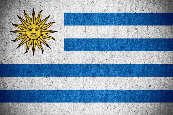 Zászló Uruguay szalag durva minta textúra Stock fotó © MiroNovak