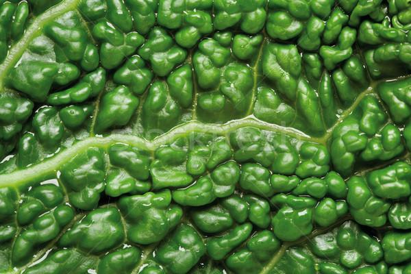savoy cabbage background Stock photo © MiroNovak