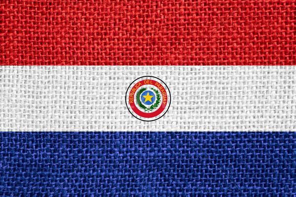 Zászló Paraguay szalag vászon textúra háttér Stock fotó © MiroNovak
