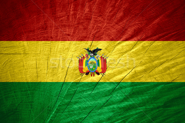 Zászló Bolívia szalag fából készült textúra Stock fotó © MiroNovak