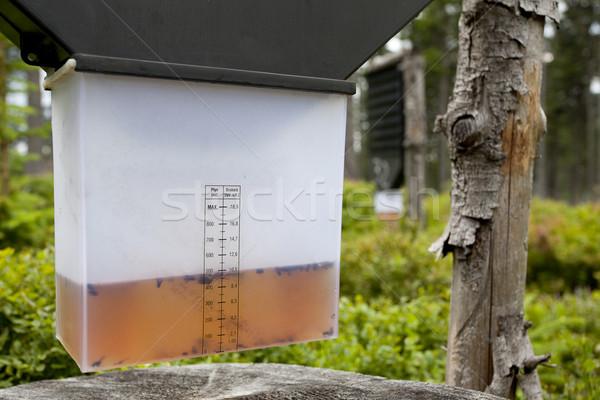 Rovar csapda erdő folyadék Stock fotó © MiroNovak