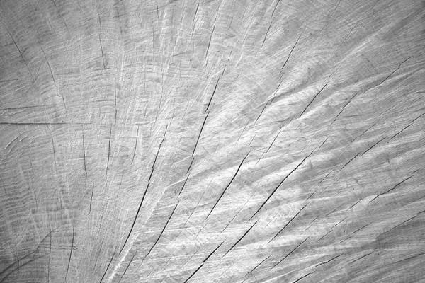 white wooden background Stock photo © MiroNovak