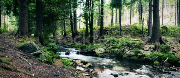 Erdő folyam tájkép hegy panoráma folyó Stock fotó © MiroNovak