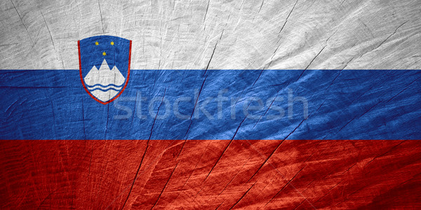 flag of Slovenia Stock photo © MiroNovak