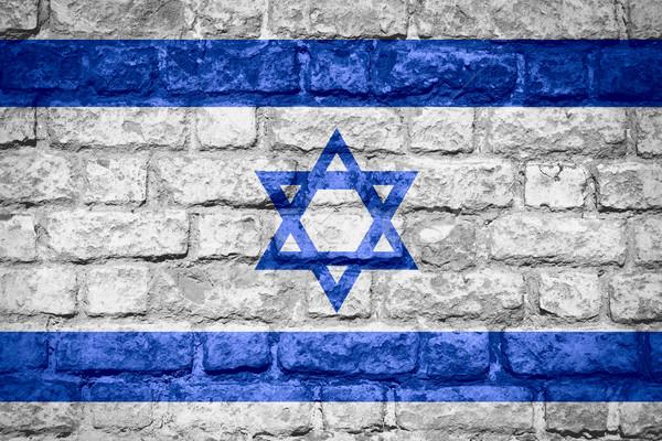 флаг Израиль израильский баннер кирпичных текстуры Сток-фото © MiroNovak