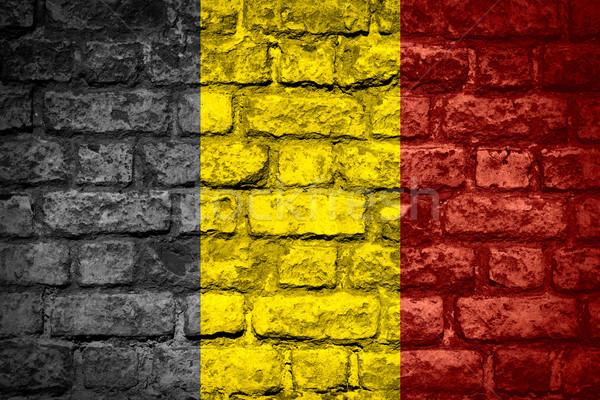 Vlag België banner baksteen textuur Stockfoto © MiroNovak
