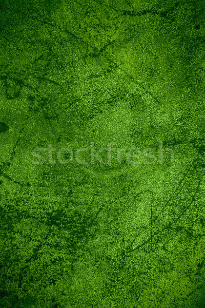 green rust metal background Stock photo © MiroNovak