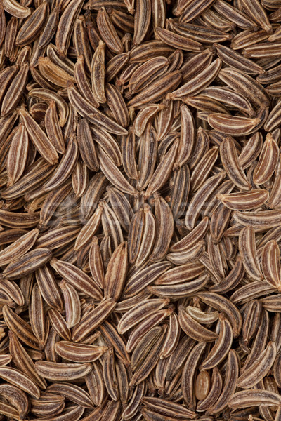 Stock photo: caraway seeds background