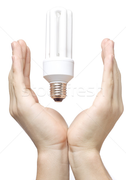 Hands and bulb Stock photo © mirusiek