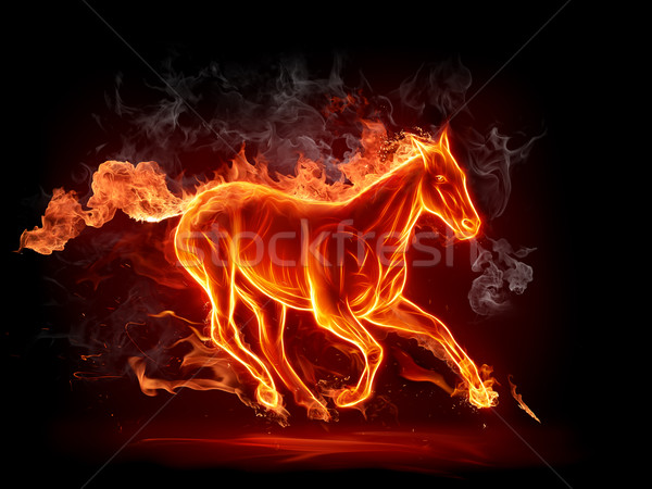 Hot stallion Stock photo © Misha