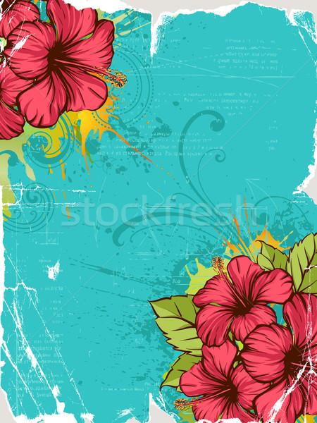 Hibiszkusz nyár virágmintás levél trópusi minta Stock fotó © Misha