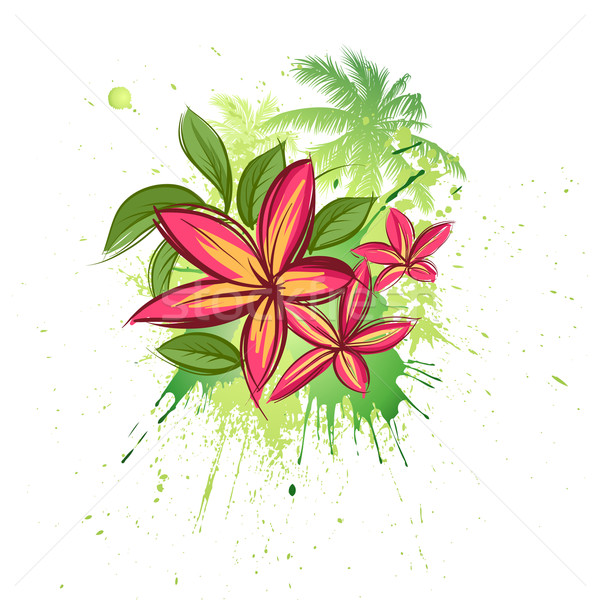 Tropicali fiori floreale natura bellezza rosso Foto d'archivio © Misha