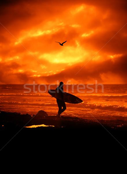 Surfer silhouet man surfboard zonsondergang water Stockfoto © Misha