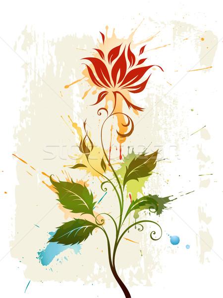 Foto d'archivio: Acquerello · fiore · vettore · grunge · floreale · fiore · design