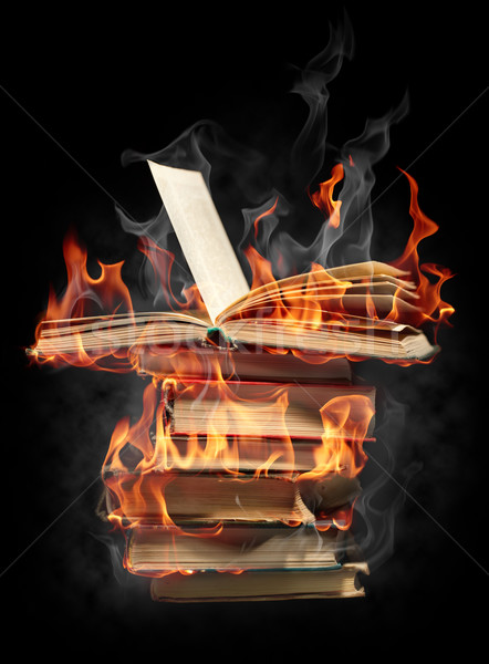 Burning books Stock photo © Misha