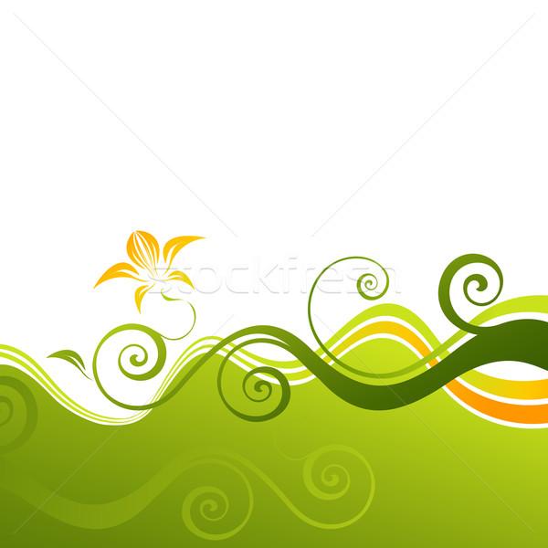 Stilizált virág vektor dekoratív virágmintás terv levél Stock fotó © Misha