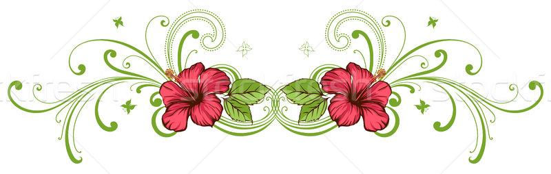 Ebegümeci tropikal çiçek çiçek soyut kırmızı tropikal Stok fotoğraf © Misha
