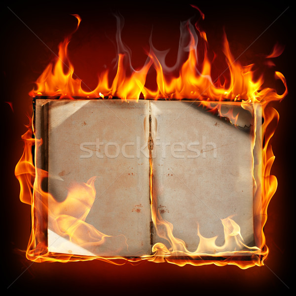 Burning book Stock photo © Misha