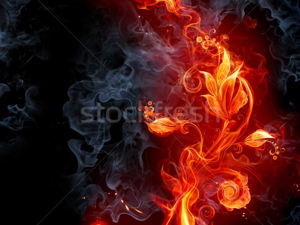 Tüzes virág tűz absztrakt szépség füst Stock fotó © Misha