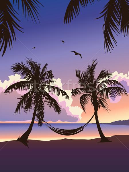 Stok fotoğraf: Tropikal · cennet · gün · batımı · yaz · gökyüzü · siluet