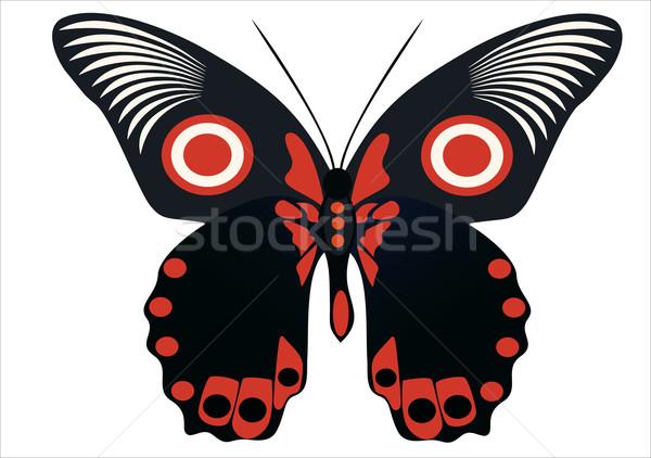 Izolált pillangó természet háttér narancs fekete Stock fotó © mitay20