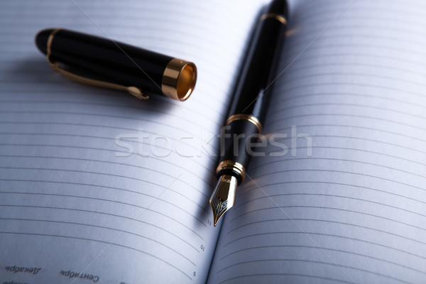 diary with fountain pen 3 Stock photo © mizar_21984