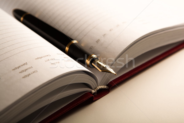 diary with fountain pen 6 Stock photo © mizar_21984