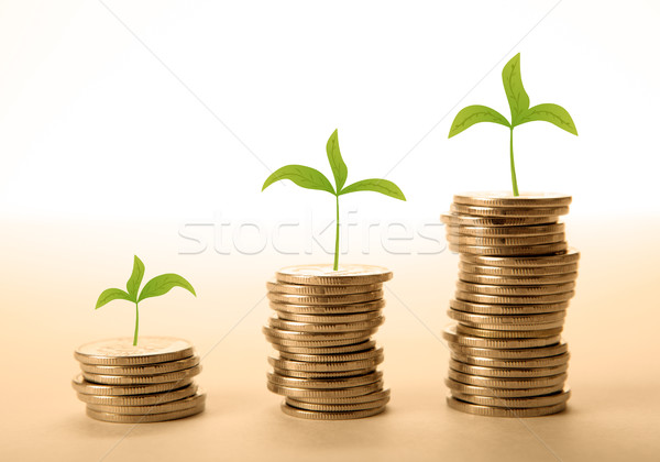 stacks of coins with sprouts make money Stock photo © mizar_21984