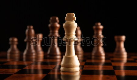 chess game with the king in the center Stock photo © mizar_21984