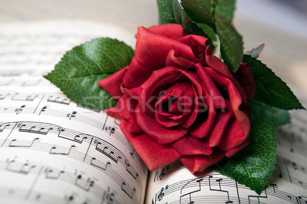 Steeg bloem muziek boek Stockfoto © mizar_21984