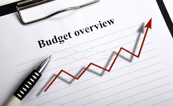 document with title budget overview and diagram Stock photo © mizar_21984