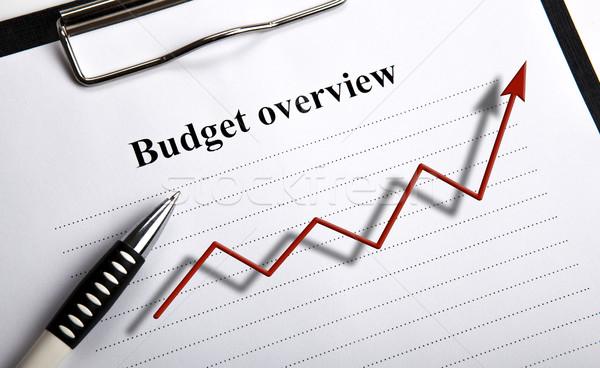 Documento título orçamento diagrama negócio Foto stock © mizar_21984