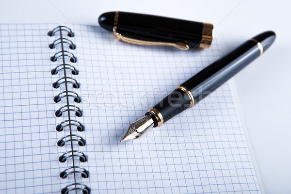 diary with fountain pen 11 Stock photo © mizar_21984