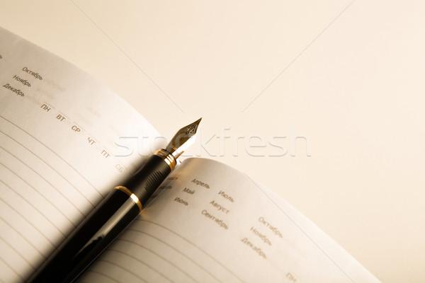 дневнике авторучка 10 белый пер Сток-фото © mizar_21984