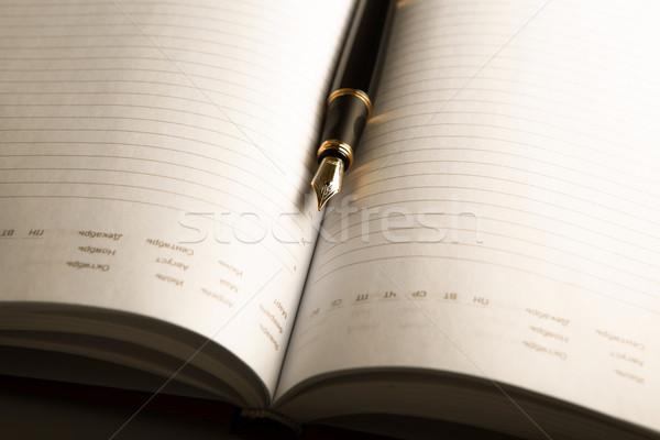 diary with fountain pen 2 Stock photo © mizar_21984