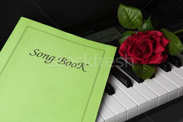 Pianotoetsen lied steeg bloem muziek piano Stockfoto © mizar_21984