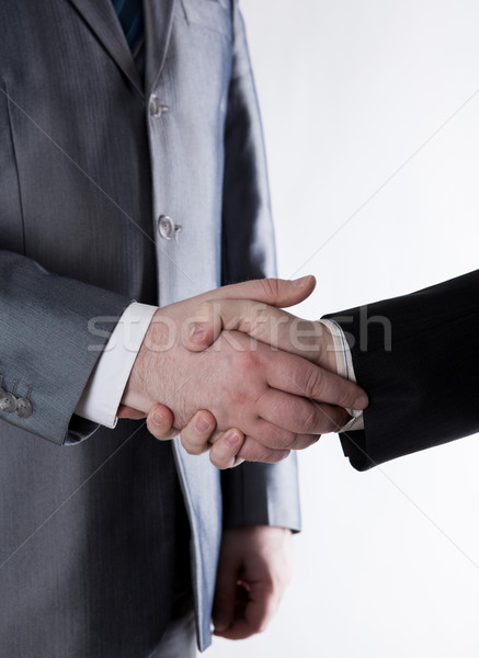 signing of the agreement and a handshake Stock photo © mizar_21984
