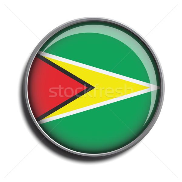 Zászló ikon webes gomb Guyana izolált fehér Stock fotó © mizar_21984