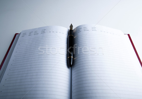 Diário caneta-tinteiro branco caneta caderno Foto stock © mizar_21984