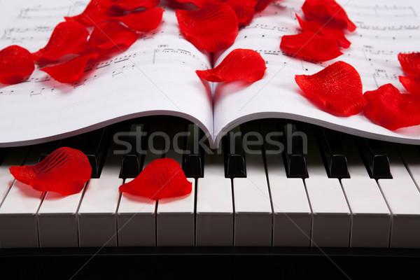 клавиши пианино музыкальный книга черно белые ключами фортепиано Сток-фото © mizar_21984