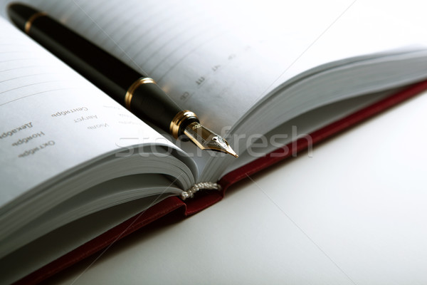 diary with fountain pen Stock photo © mizar_21984