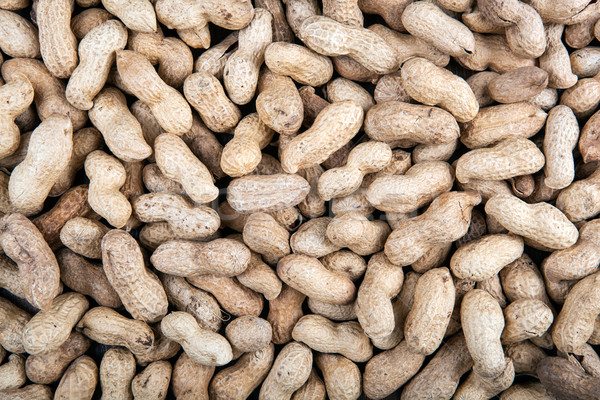 large grains of peanuts in the shell Stock photo © mizar_21984